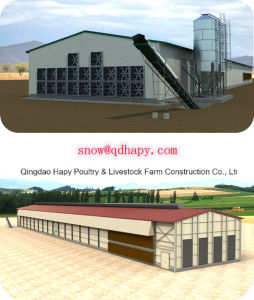 Turnkey Project with Low Price and High Quality for Poultry House pictures & photos