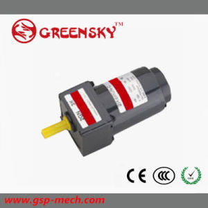 GS High Torque Long Life 6W 60mm AC Induction Gear Motor pictures & photos