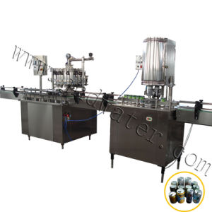 1000-2000 Automatic Can/H Can Filling Sealing Machine pictures & photos