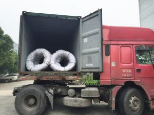 Safs Steel Wire 10b21 for Nuts pictures & photos
