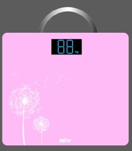 Bathroom Body Scale pictures & photos