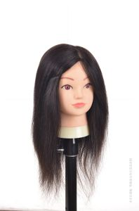 Mannequin Head Natural Human Hair Training Head 22inches for Style pictures & photos
