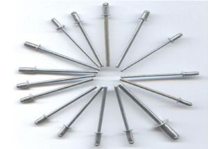 All Stainless Steel Dome Head Pop Blind Rivet pictures & photos