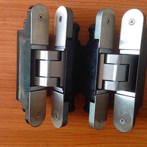 3D Adjustable Concealed Hinge pictures & photos