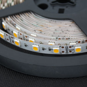 LED Strip Lights with 5050 Single Color LEDs pictures & photos
