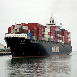 Biggest Shipping Forwarder in China to North Africa pictures & photos