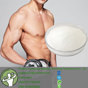Top Quality Steroids White Crystalline Powder Testosterone Decanoate pictures & photos