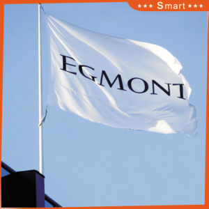 Custom Government Institute Flag for Outdoor or Event Advertising pictures & photos