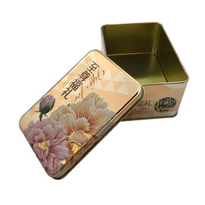 Rectangle Shape Wholesale Cookie Cake Box Packaging Tin Container pictures & photos