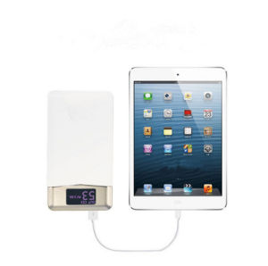 New Quick Charging Ptotable Charger Mobile Power Bank pictures & photos