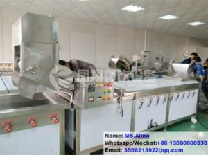 PT-2000 Vegetable Blanching Machine Fruit Blancher French Fries Blanching Machine pictures & photos