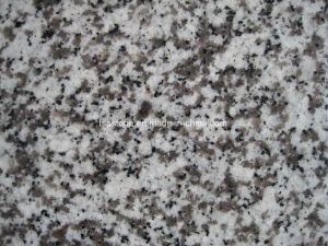 Chinese Guangdong White Granite G439 Granite Flooring pictures & photos