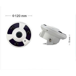 1080P Fisheye 30m IR Onvif P2p IP Camera From CCTV Supplier pictures & photos