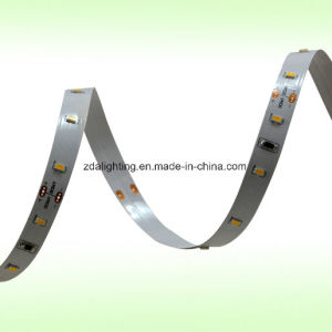 12V/24V 140LEDs/M SMD3014 Pure White 4000k LED Strips pictures & photos