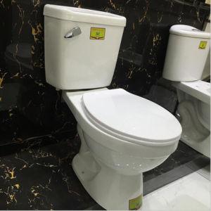 Good Price Types of Two Piece Ceramic Toilet Bowl pictures & photos
