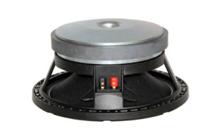 Professional Outdoor Active 10inch with 190 Magnet PA System Loud Speaker pictures & photos
