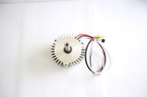 Motor Power Sprayer Pump 48V/36V 2000rpm to 4000rpm
