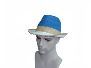 Tourist Straw Hat Leisure Cap pictures & photos