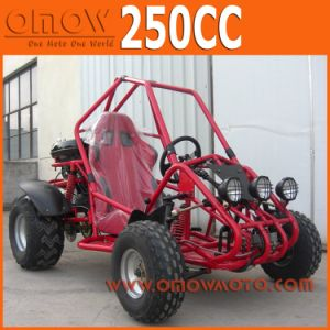 Single One Seat 250cc Automatic Go Kart, Cross Kart pictures & photos