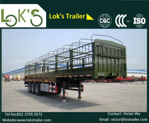40 Feet 3 Axle Skate Semi Trailer pictures & photos