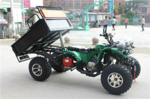 Cheap Farm Quad ATV with Snow Tire 10/12inch pictures & photos