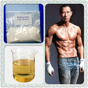 Factory Supply Steriod Powder Testosterone Acetate for Bodybuilding Fitness pictures & photos