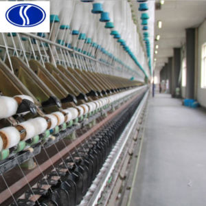 SD 300d/10f FDY Nylon Mother Yarn pictures & photos