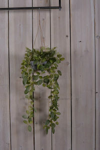 Artificial Vivid Olivine Leaves in Hanging Paper Mache Pot for Outdoor Decoration pictures & photos