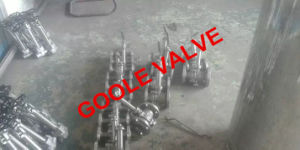 API Flanged Extended Stem Cryogenic Ball Valve (GADQ41F) pictures & photos