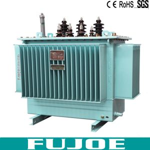 160kVA 3 Phase High Voltage Electrical Oil Immersed Type Transformer S11 Supplier From China pictures & photos