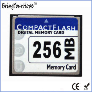 100X Compact Flash 256MB CF Memory Card (256MB CF) pictures & photos