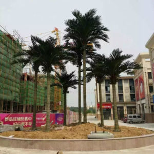 Realistic 5 Meters Artificial Coconut Palm Tree pictures & photos