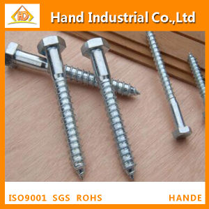 Stainless Steel 304/316 DIN571coach Screw Wood Screw pictures & photos