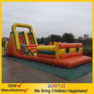 Giant Inflatable Clown Slide Double Slides for Sale