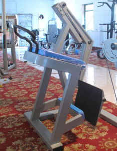 Ce Certificated Fitness Equipment Chest Press (SM01) pictures & photos