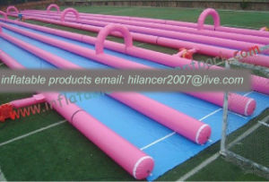 2017 New Largest Inflatable Water Slide pictures & photos