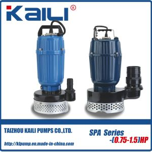 SPA Submersible Water Pump pictures & photos