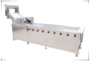 High Preesure Spray Vegetable Washer Washing Disinfecting Machine pictures & photos