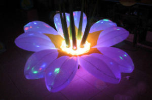 Decoration LED Lighting Inflatable Flower for Party Event pictures & photos