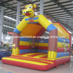 Hot Sale Inflatable Bouncer for Amusement Park