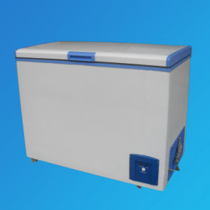 Energy Freezer, a+++ Freezer Bd-210 pictures & photos