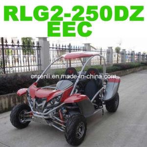 Beach Buggy (RLG2-250DZ)