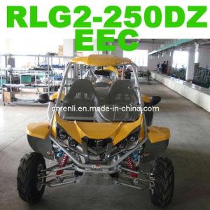 250CC Buggy EEC (RLG2-250DZ)