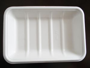 Disposable Sugarcane Paper Tray (HR-18)