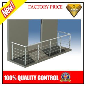 Stainless Steel Stair Balcony Balustrade with Glass or Pipe (JBD-B002) pictures & photos