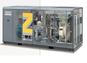 Atlas Copco Oil Free Screw Air Compressor Zr250FF pictures & photos