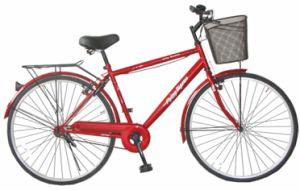 Simple Design 1speed Bike MTB Bicycle (FP-MTB-P009) pictures & photos