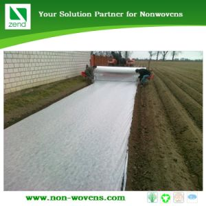 Non-Woven Floating Row Cover Fabric pictures & photos