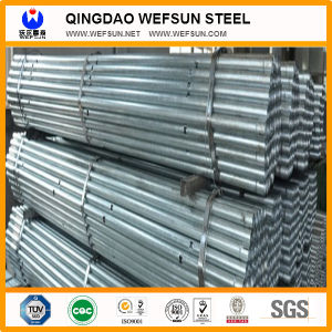Steel Pipe for poultry feeding system pictures & photos