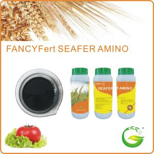 Seaweed Amino Acid Liquid Fertilizer pictures & photos